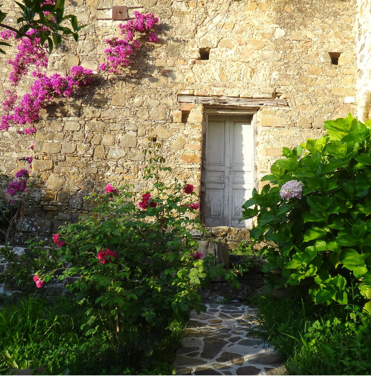 Casa albini b b bed and breakfast nel cilento for Giardino casa classica